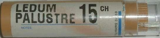 LedumPalustre15CH