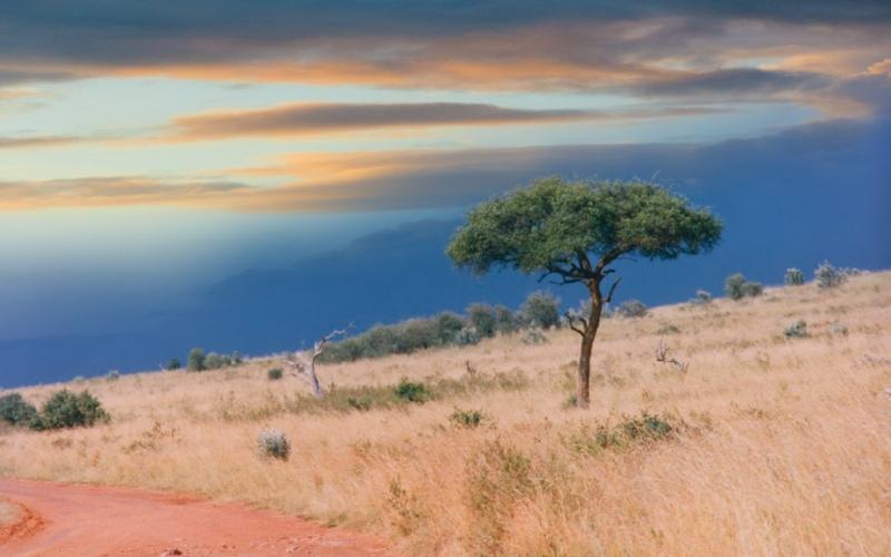 Плато Сомали