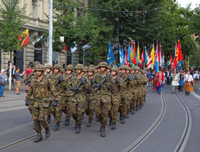 Армия Жизнь за границей, домашние животные, законы в действии, особенности, швейцария, шум