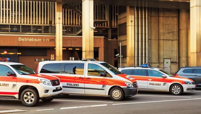 Преступники Жизнь за границей, домашние животные, законы в действии, особенности, швейцария, шум