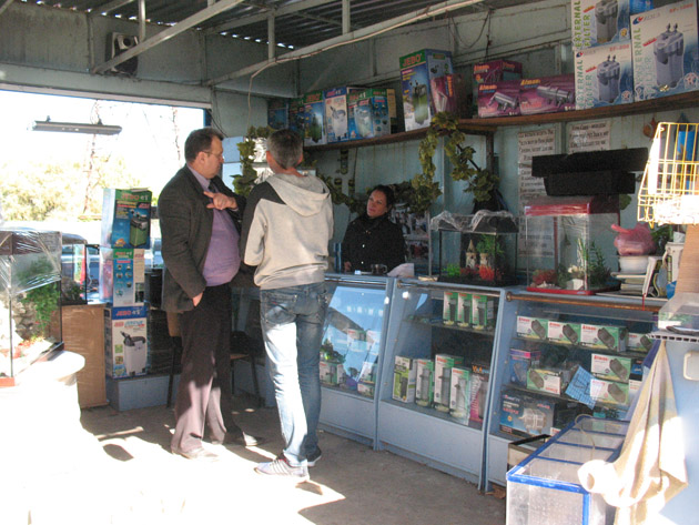 Аквариумы и все, что нужно для их оснащения! Птичий рынок в Харькове или харьковская «Птичка»