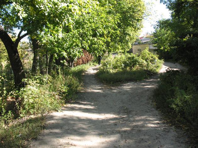 Дорога вдоль берега реки Уды. Птичий рынок в Харькове или харьковская «Птичка»