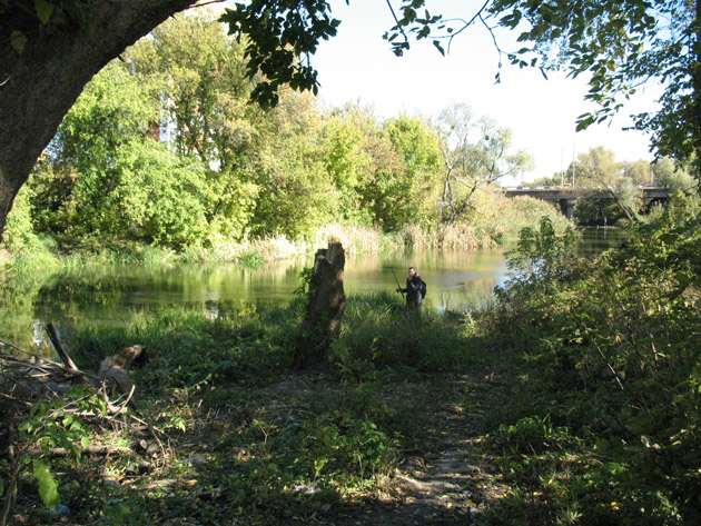 Рыбак на берегу реки Уды. Птичий рынок в Харькове или харьковская «Птичка»