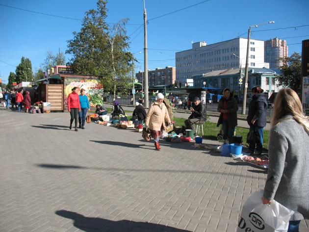 Уличная торговля. Птичий рынок в Харькове или харьковская «Птичка»