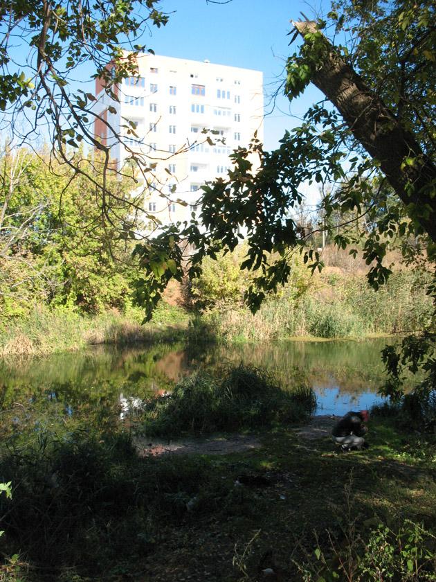 Дома подбираются к самой реке... Птичий рынок в Харькове или харьковская «Птичка»