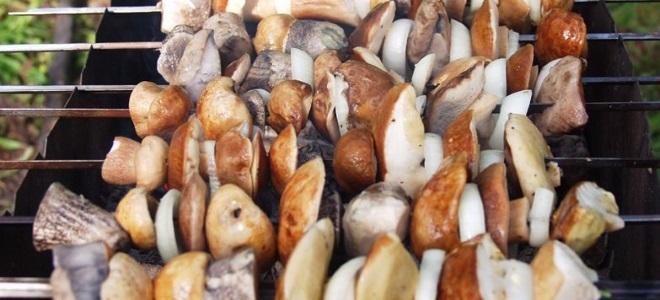 Маслята жареные на мангале