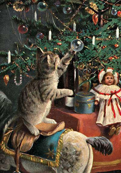 рождество кот