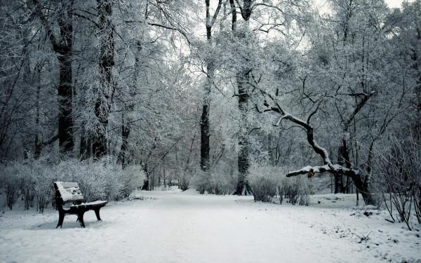 479562_zima_park_sneg_skamya_1920x1200_(www.GdeFon.ru)
