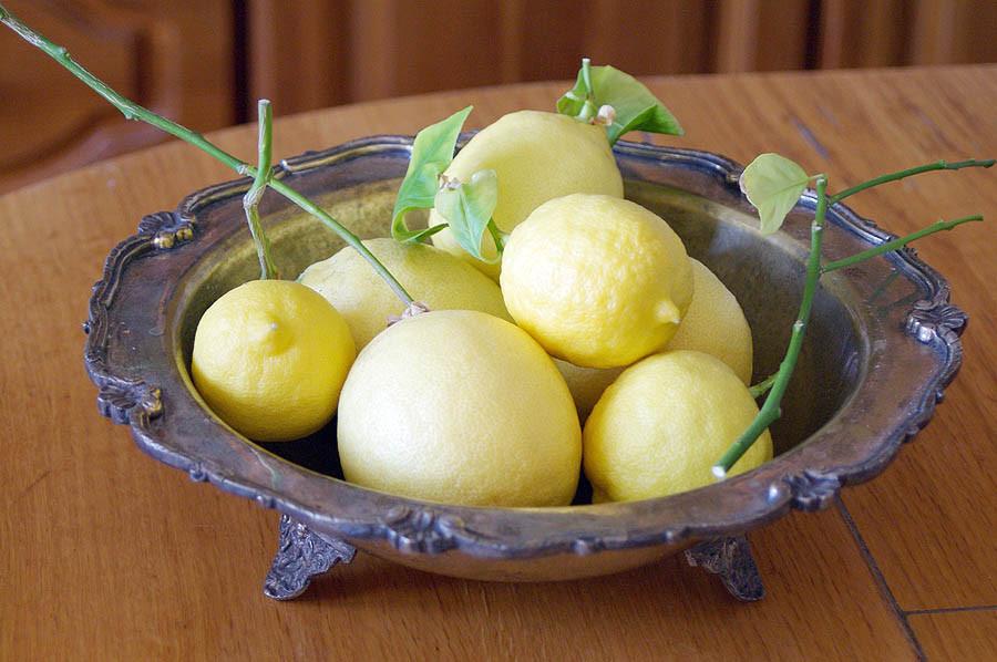 lemon7
