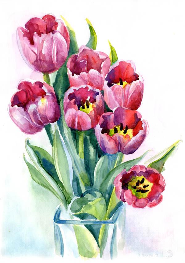тюльпаны 8м