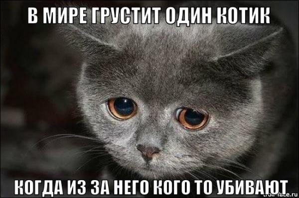 MTlpj_vsKOI