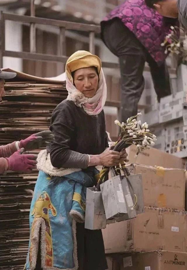 Тибетский ренессанс