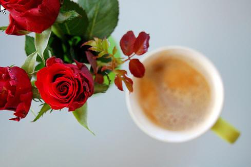 rose_coffee