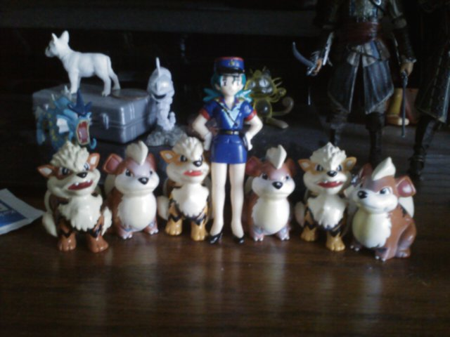 Officer Jenny and he Growlith and Arcanines