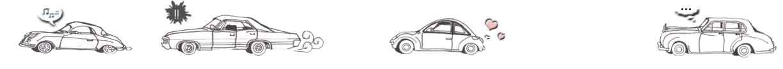 car divider
