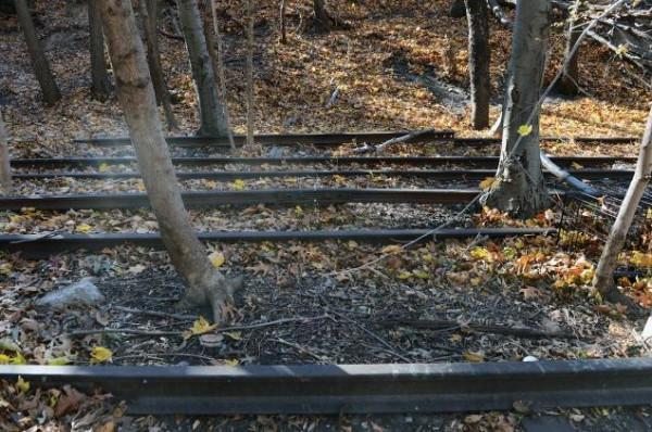 rail26q-3-web