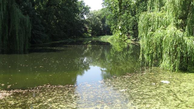 Парк Нивки - озера