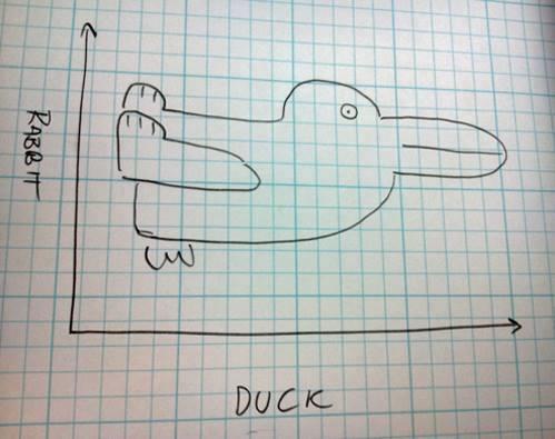 rabit duck