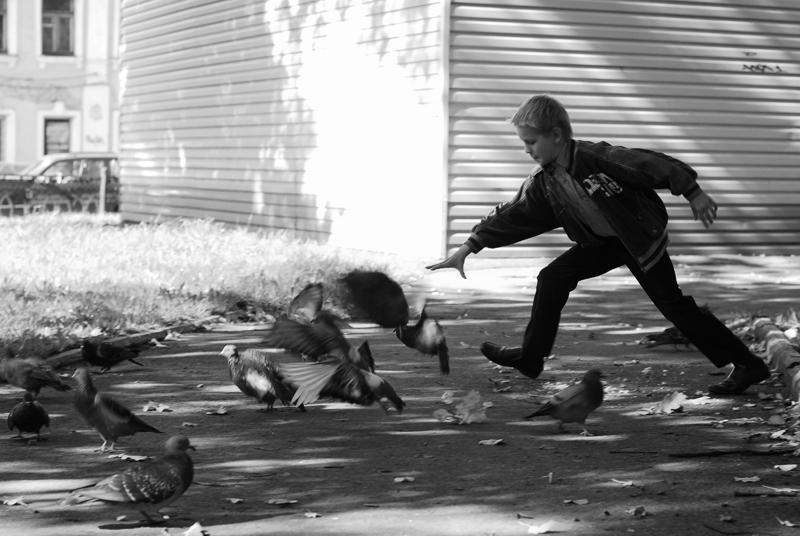 _DSC7796 пацан и голуби