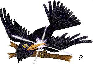 Raven's Silver JPEG