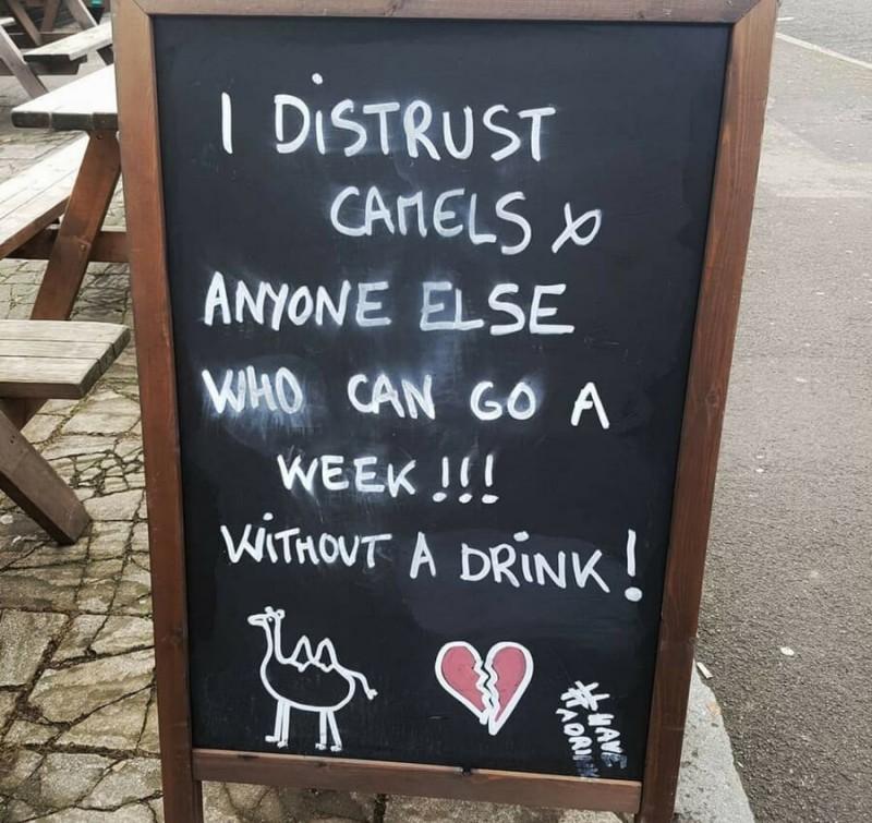 distrust-camels-sign-16809-89782.jpg