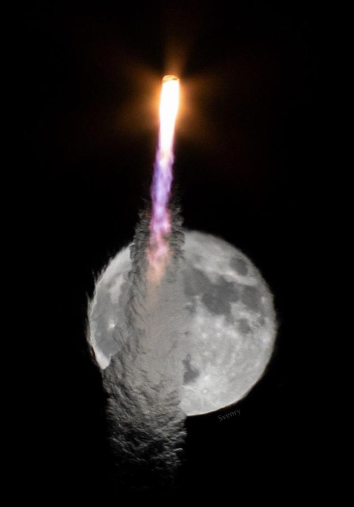 Cygnus14d-svenry.jpg