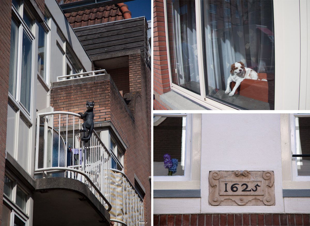 Амстердам_Йорданский_04052013_1045