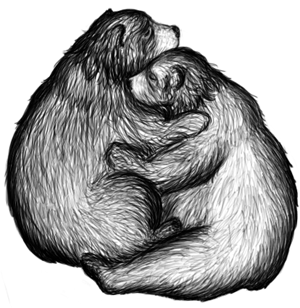 bear Gen and bear Jared cuddling