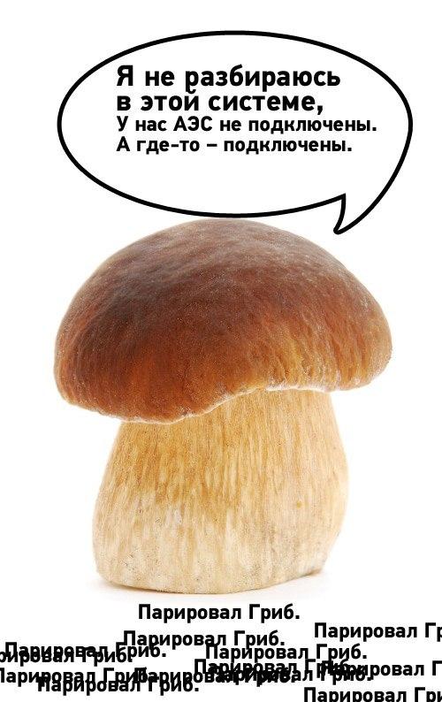ZKdkOFPSAi0