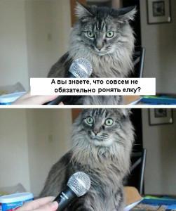 кот-живность-елка-сделал-сам-985294