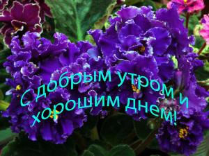 1350145248_kartinki_ifoto_s_dobrim_etrom_6537_29-7