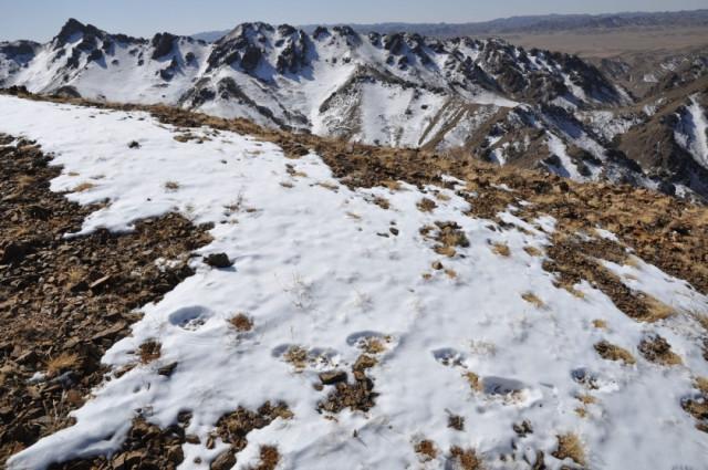 Mountain range in Mongolia