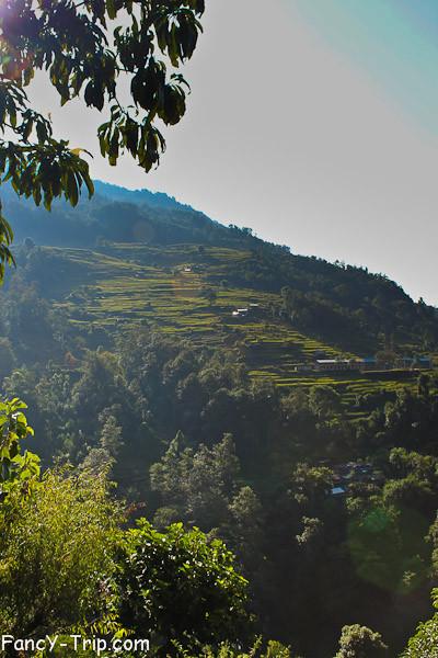 nepal-0583