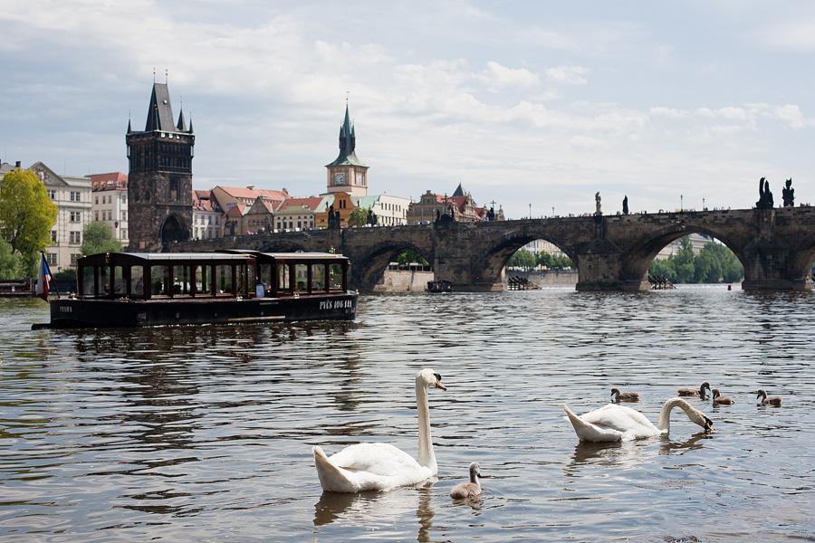 Prague_in_may_037