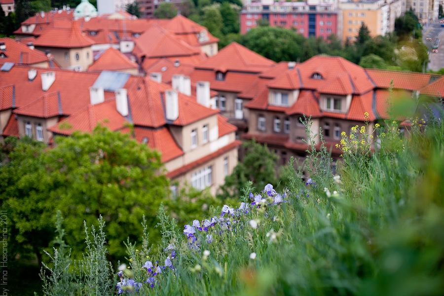 Prague_in_may_097