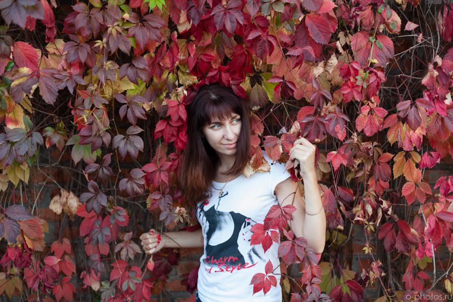 autumn2015-27.jpg