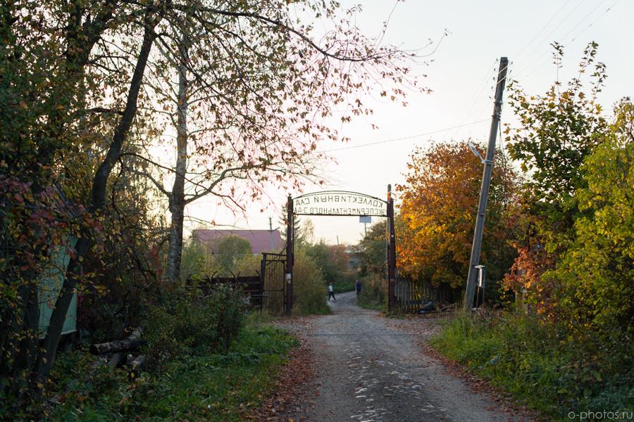 autumn2015-28.jpg