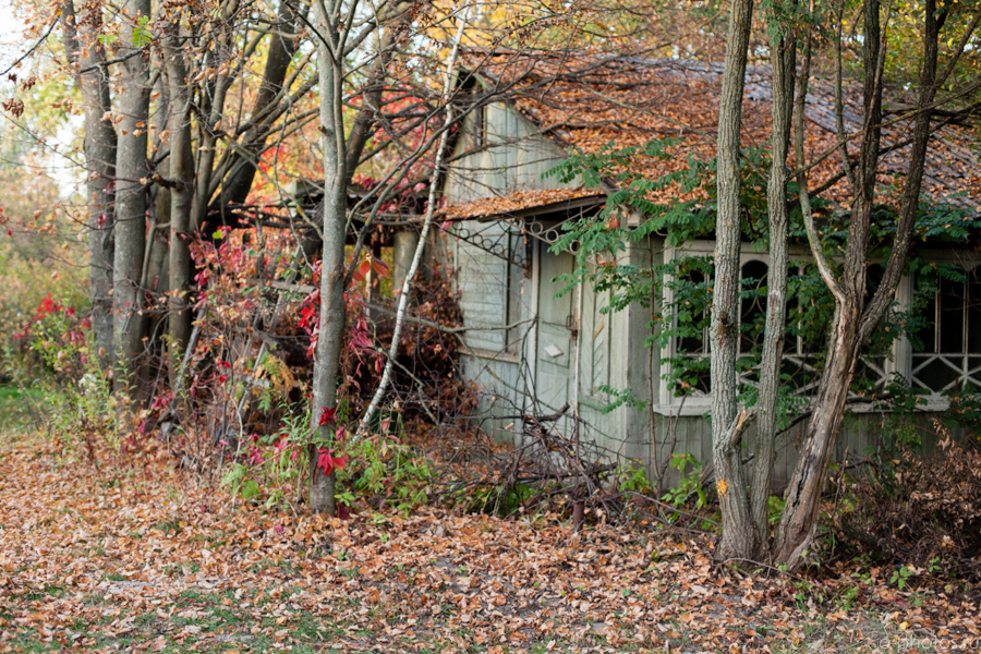 autumn2015-29.jpg