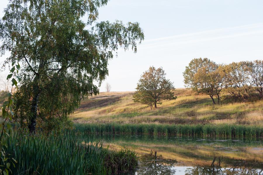 autumn2015-31.jpg