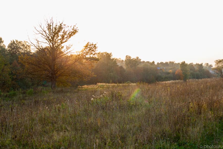 autumn2015-40.jpg
