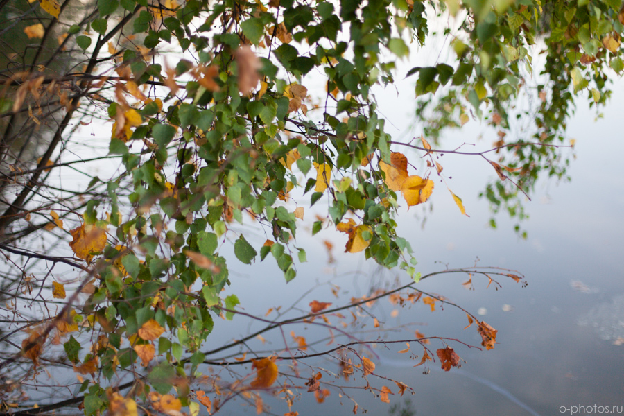 autumn2015-44.jpg
