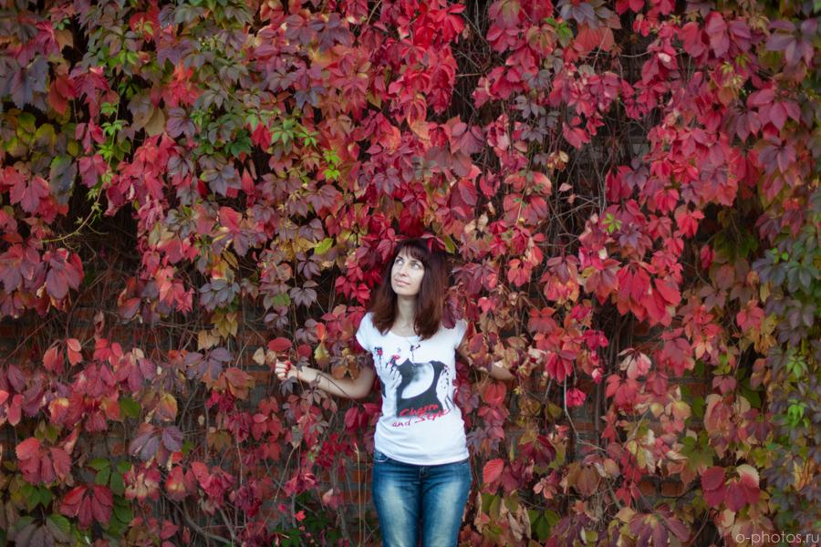 autumn2015-48.jpg