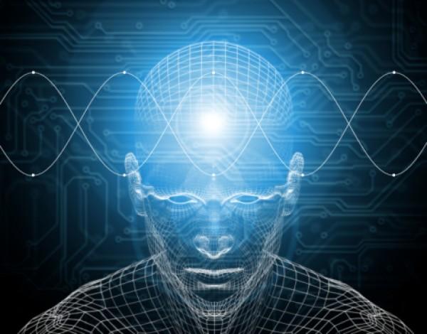 Ученые: в результате агрессии в мозге появляются новые нервные клетки