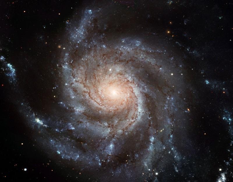 Галактика M101 (Вертушка)