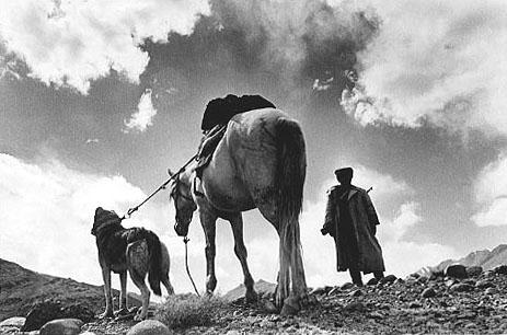 Vladimir Syomin-from-Eurasianet-dog-horse-rifleman