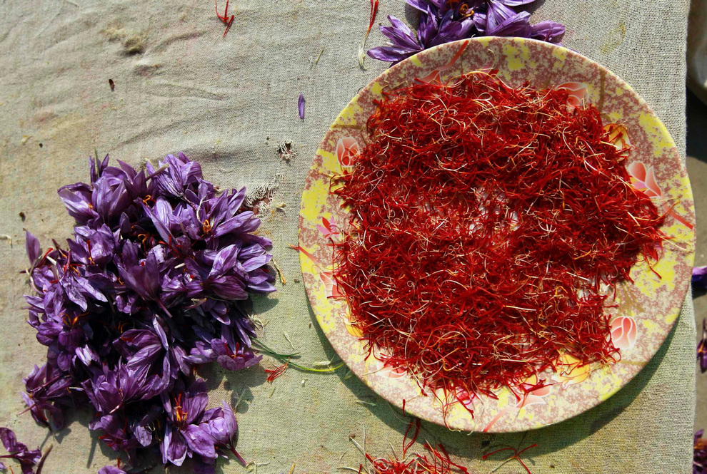 saffron_2012_Pampur_in_Jammu_n_Kashmir_07_Reuters_Fayaz_Kabli