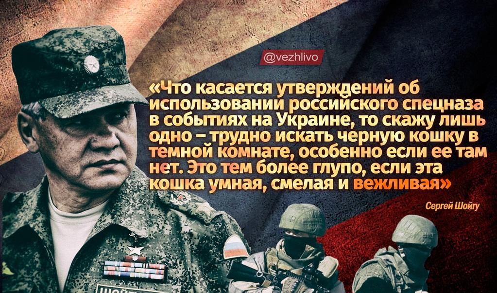 Euromaidan_2014_04_20_Shoigu_Vezhlivaya_koshka_LJ_sandra-nova