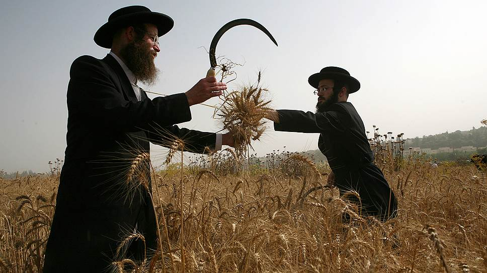 jews_orthodox_2014_crops_AFP