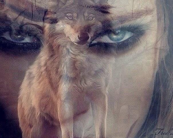 Открытки днем, картинки одинокой женщины волчицы