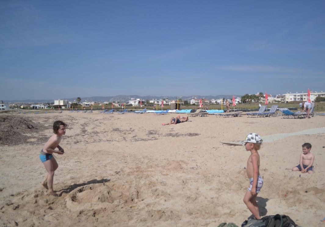 Раздетые на общественном пляже 7 фотография